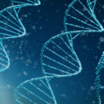 Can Coronavirus Infect Humans with CCR5-DELTA 32 Mutation?
