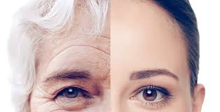 Can DNA Change Beat Ageing?