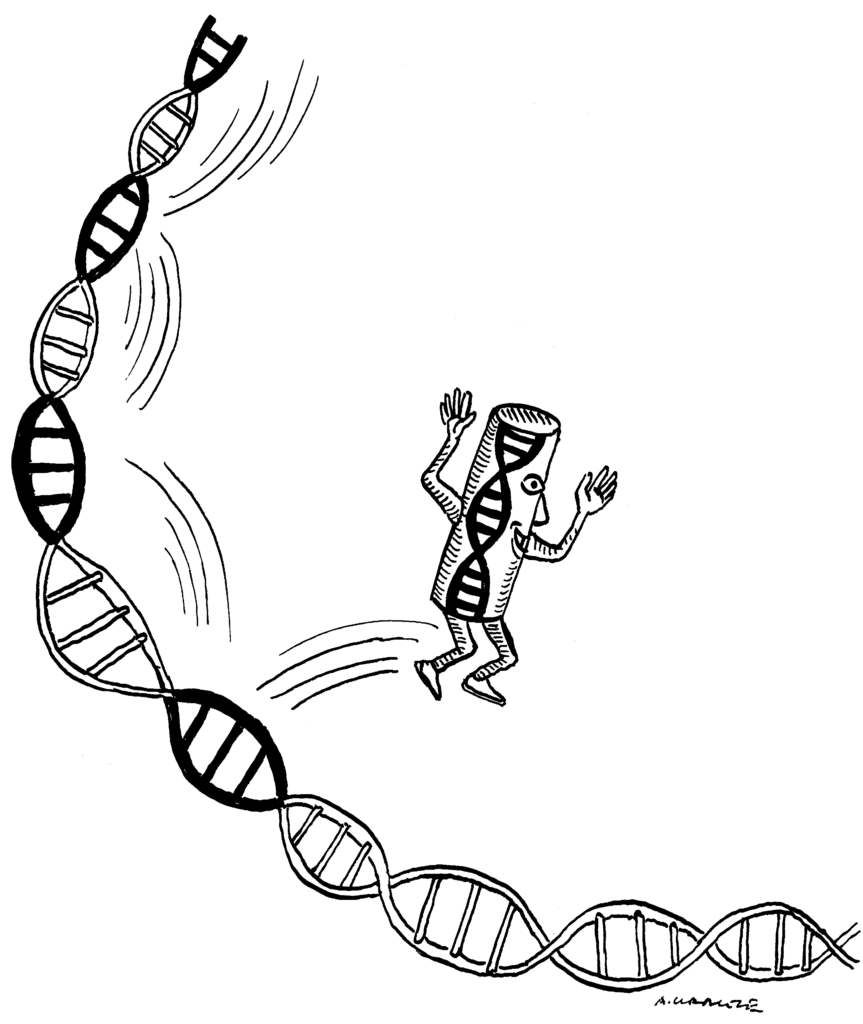 Insight Into The Jumping Genes or Transposons